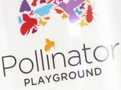 TBG_PollinatorPlayground